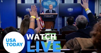White House COVID-19 Response Team holds press briefing (LIVE) | USA TODAY